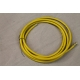 20 Ft Heavy Duty Air Hose